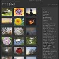 Bild: FinePics mit schönen Fotos