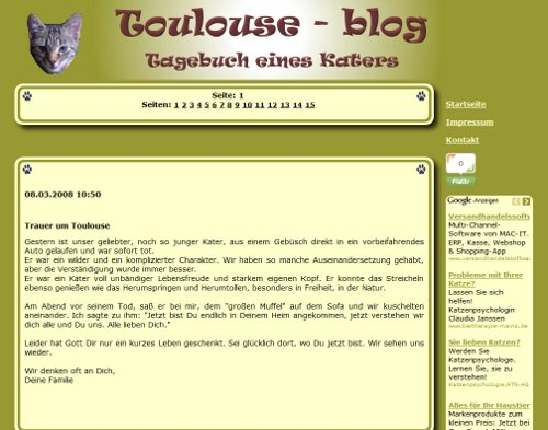 Toulouse Blog