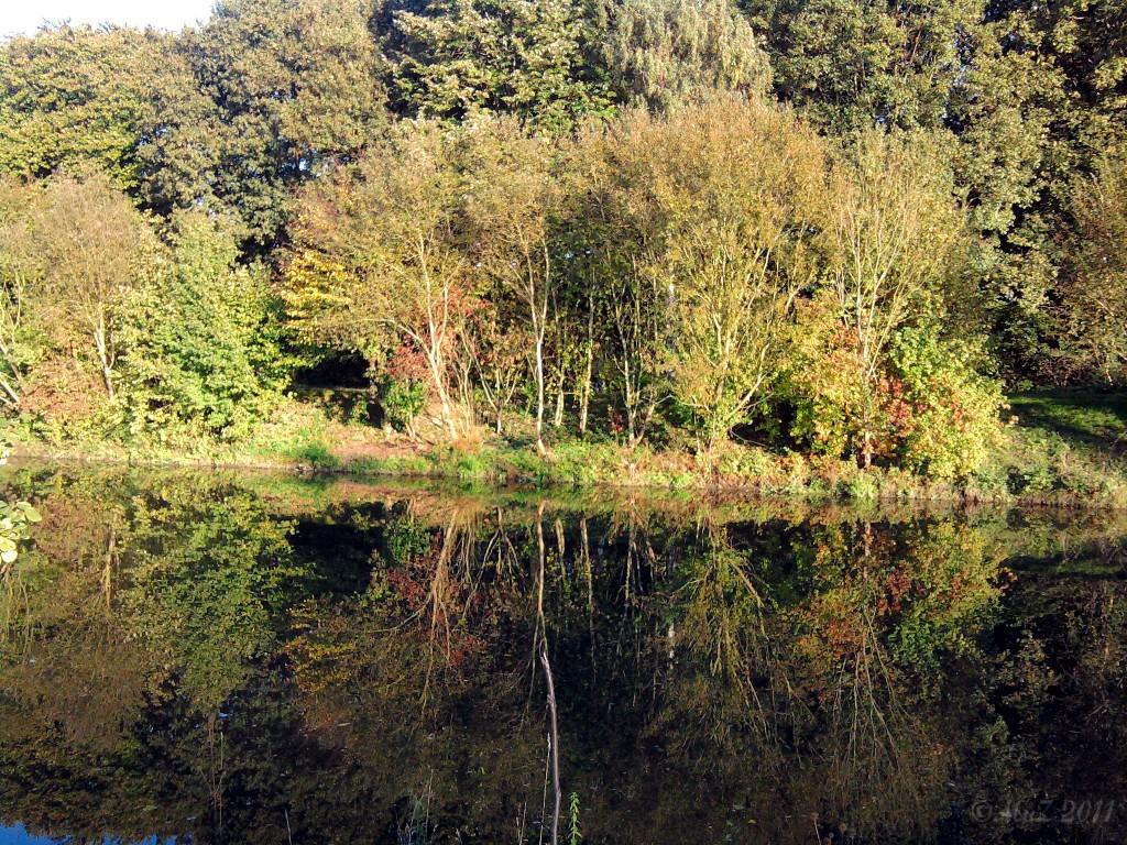 Die ruhige Nidda im Licht eines sonnigen Nachmittags im Oktober