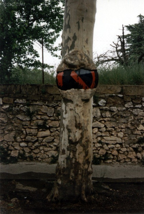 Schild an / in einem Baum - Collias Frankreich (1995)