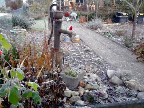Herbstmorgen im Garten (Frankfurt am Main - Westhausen)
