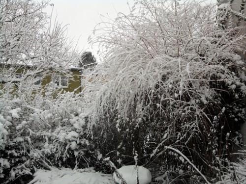 Schnee in Frankfurt am Main - Westhausen