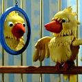 Bild: Beatboxing Papagei mit dem Kinderlied: Alle Vögel sind schon da ...