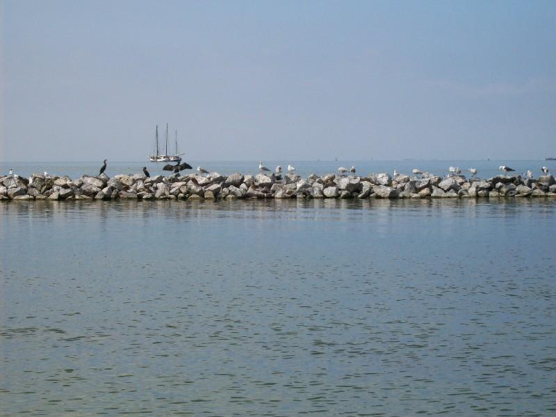 Abendstimmung in Urk am Ijsselmeer - Hier klicken, um das Bild größer auf Saskias FinePics © zu sehen