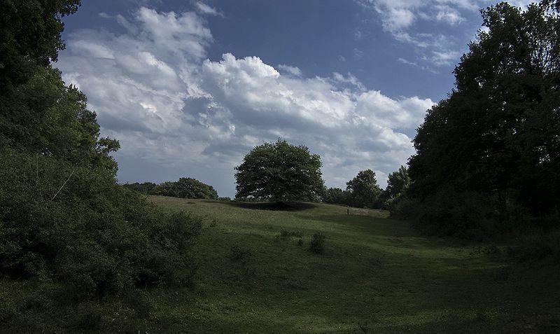 Borkener Paradies ein Foto von Hrald (Draufklicken um zu vergrößern) - Meine eigenen Fotos zeigen mehr, sind aber gerade nicht nutzbar.