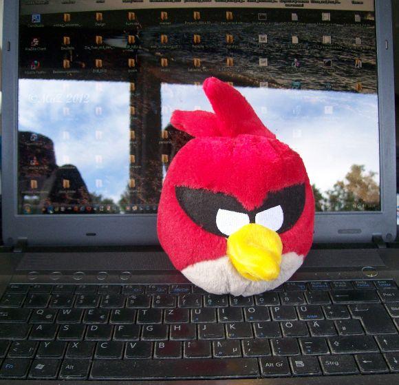 Wenn die Angry Birds dich anspringen ... solltest du eine Spielpause einlegen.
