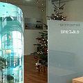 Bild: Was ich nicht brauche, ist ein Aquarium im Wartezimmer vom Urologen. (Klicken vergrößert das Bild)