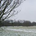 Die-ersten-Schneefloeckchen-haben-unsere-Gegend-nur-gepudert-120