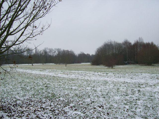 Die ersten Schneeflöckchen haben unsere Gegend nur gepudert