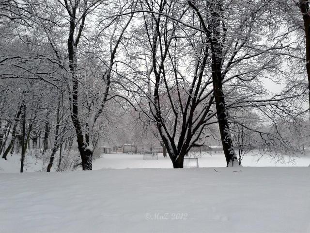Positiv gedacht trotz Behinderungen durch Schnee und Eis zum Wochenanfang
