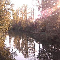 Bild: Sie schaute mich an, dann den Fluss der vor uns lag und dann wieder mich. - Hier klicken vergrößert das Bild.