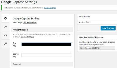Bild: 11 Google Keys ins Plugin einfügen