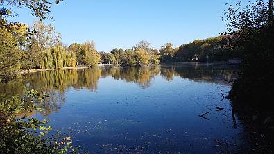 Bild: Frankfurts Ostend: Der Ostpark-Teich